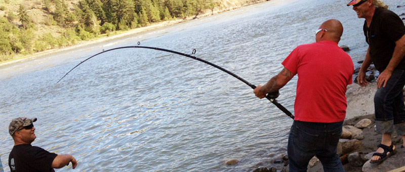 how to catch sturgeon in north saskatchewan river